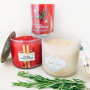 Bath & Body Works Holiday Candle Haul