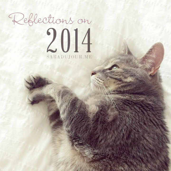 Reflections on 2014 | Sara du Jour
