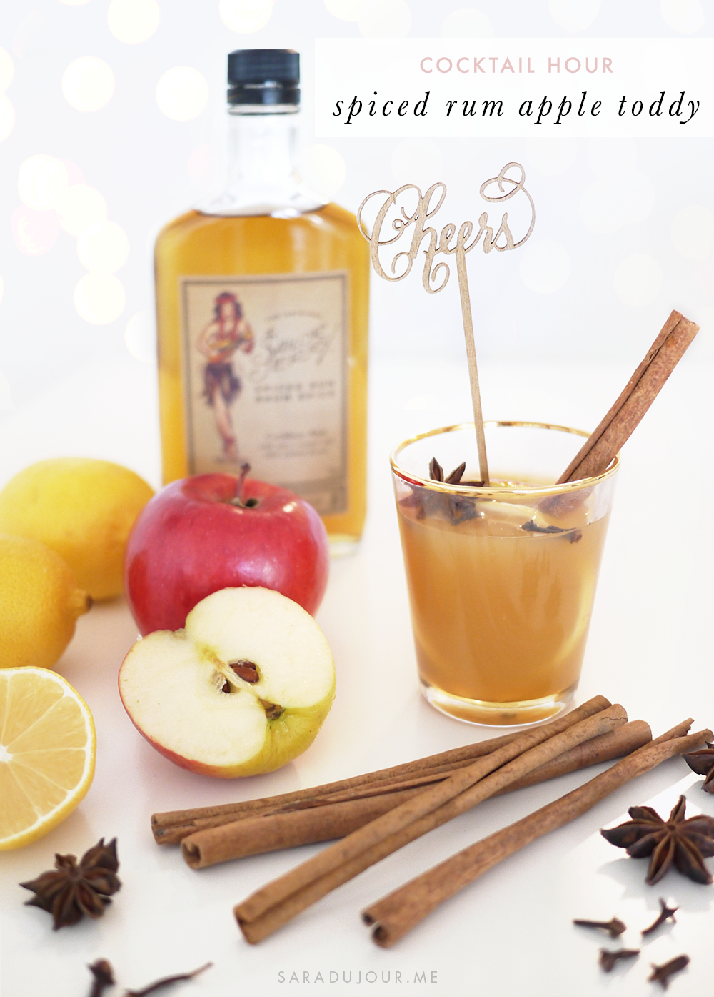 Spiced Rum Hot Apple Toddy Recipe | Sara du Jour