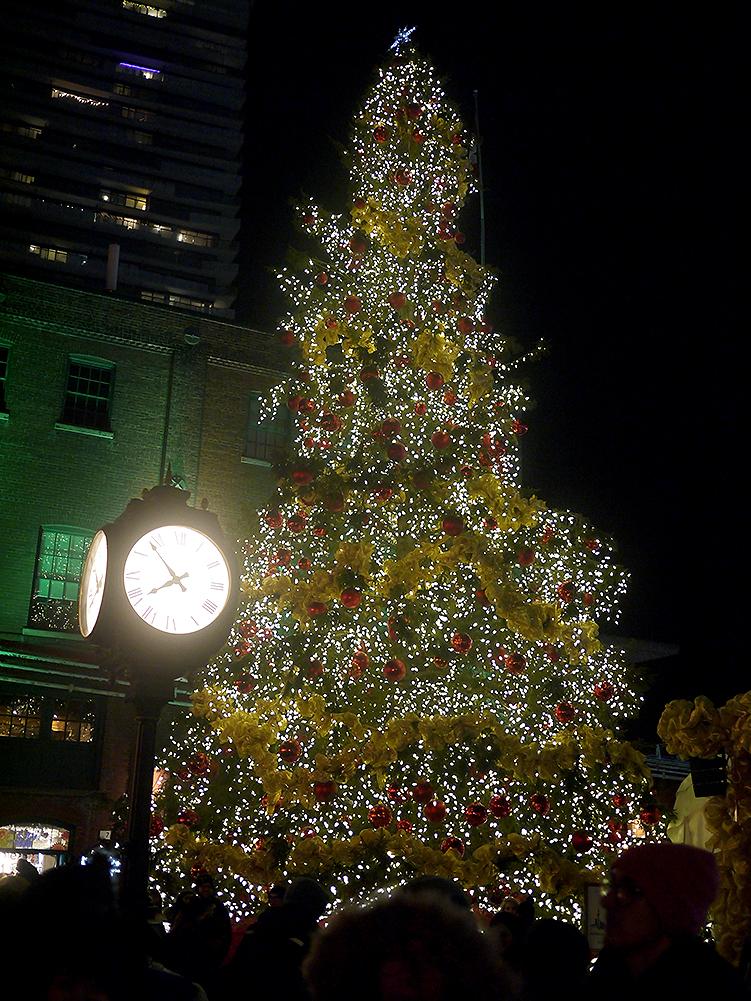 Toronto Christmas Market | Sara du Jour